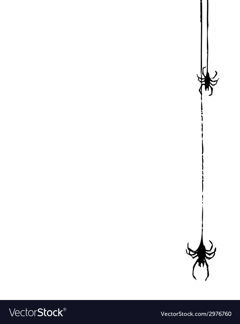 Two spiders vector | Price: 1 Credit (USD $1)