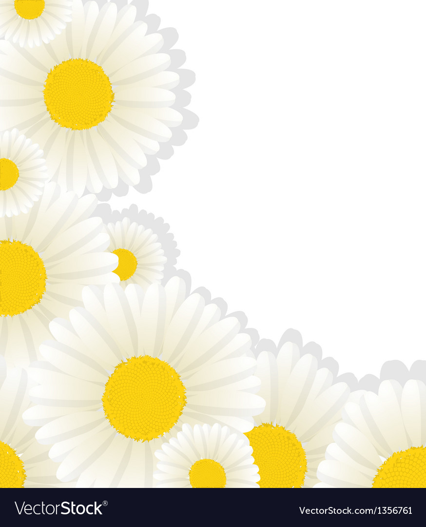 Daisy corner copyspace vector | Price: 1 Credit (USD $1)