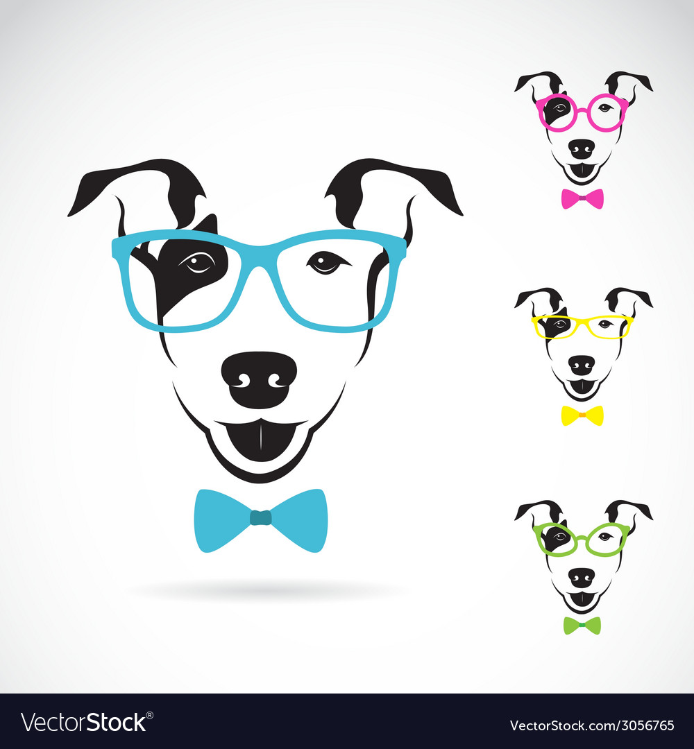 Dog bull terrier glasses vector | Price: 1 Credit (USD $1)