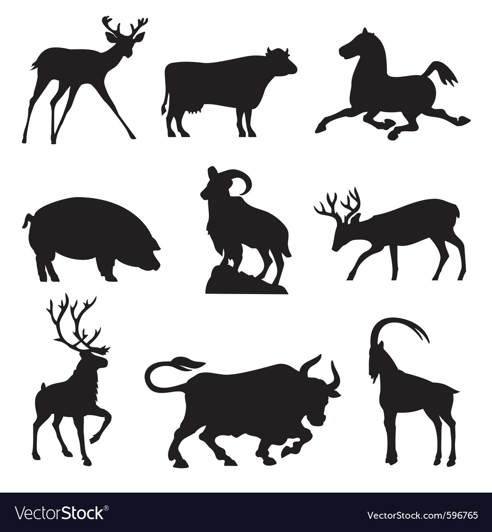 Ungulates animals vector | Price: 1 Credit (USD $1)