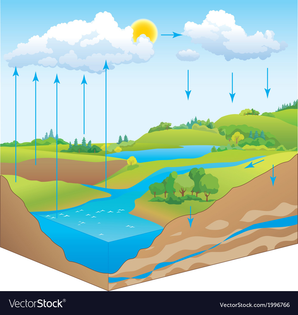 Water cycle in nature vector | Price: 1 Credit (USD $1)