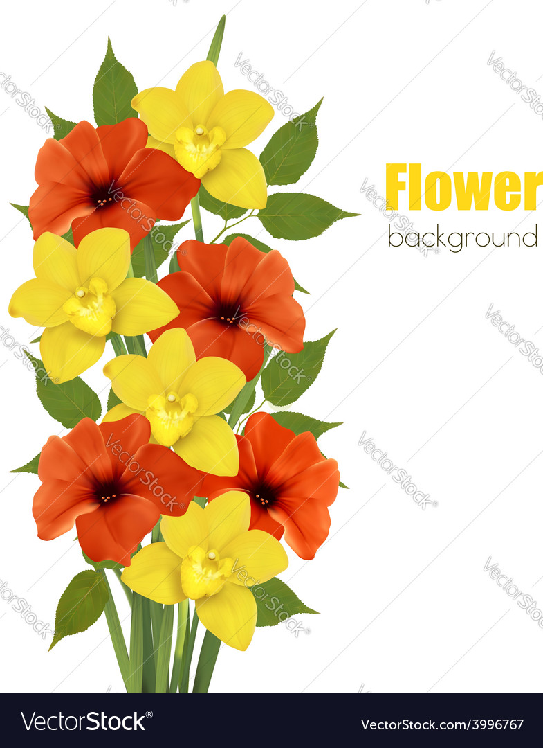Background with colorful beautiful flowers vector | Price: 1 Credit (USD $1)