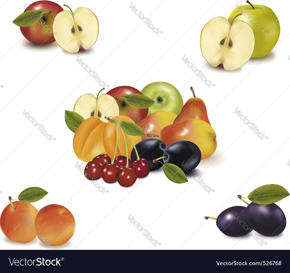 Big group with six fruit vector | Price: 3 Credit (USD $3)