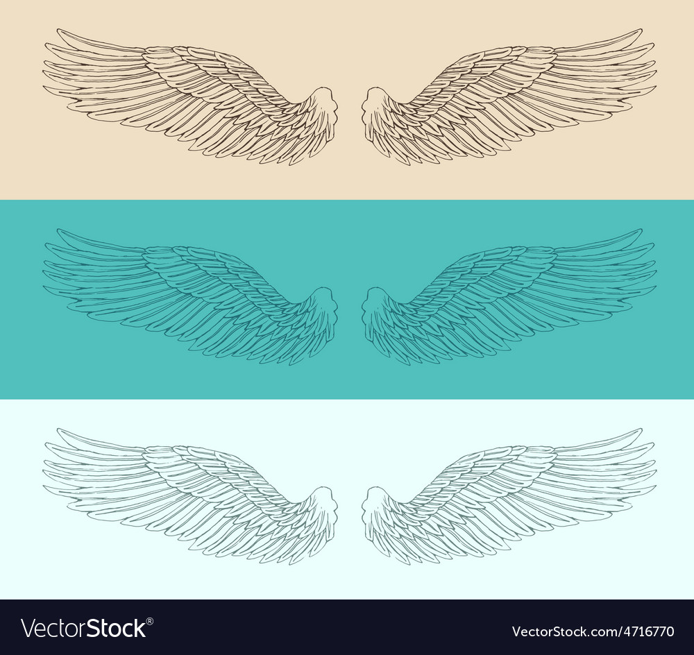 Angel wings set  engraved style vector | Price: 1 Credit (USD $1)