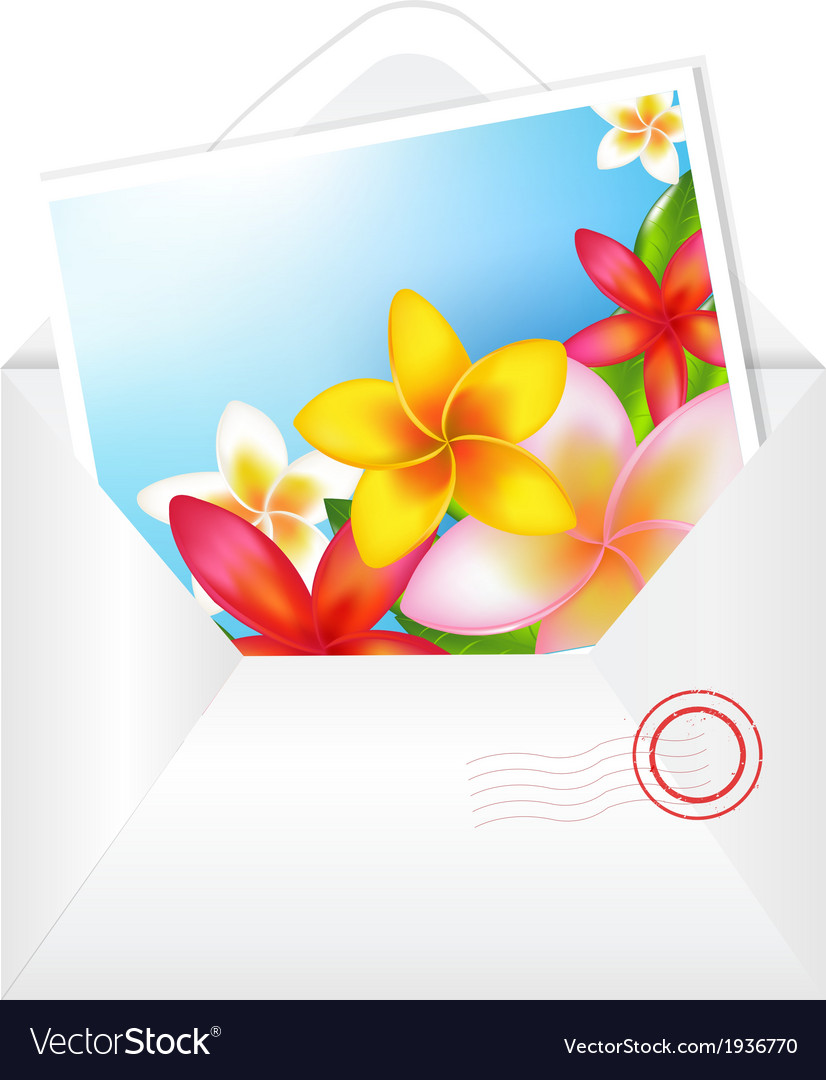 Open envelope with flowers card vector   Price: 1 Credit (USD $1)