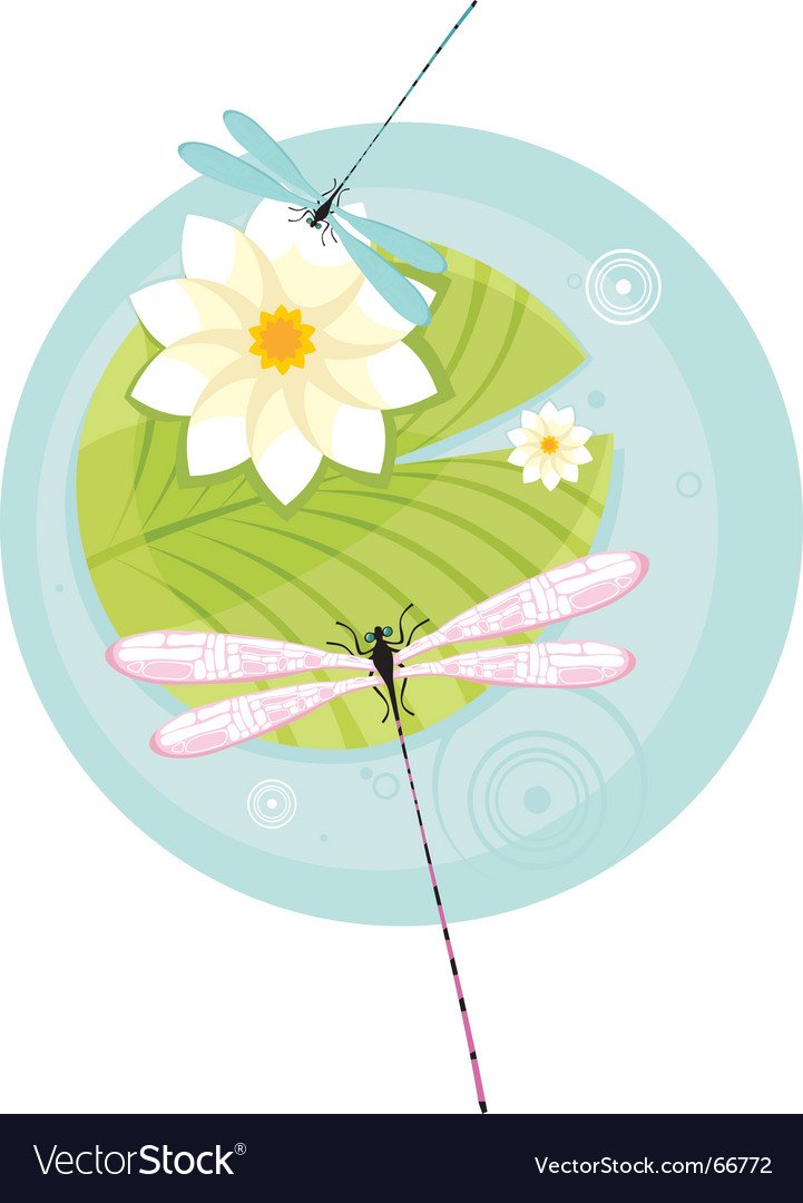Dragon fly illustration vector | Price: 1 Credit (USD $1)