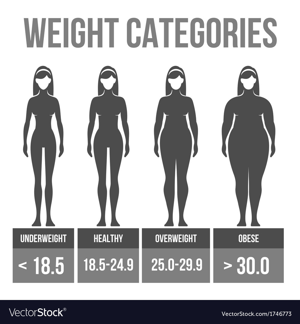 Woman body mass index vector | Price: 1 Credit (USD $1)