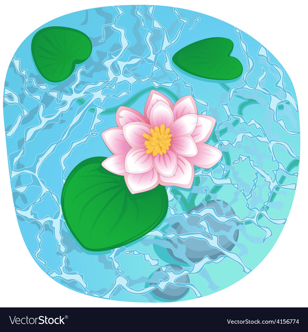Blooming lotus on shining water vector | Price: 1 Credit (USD $1)