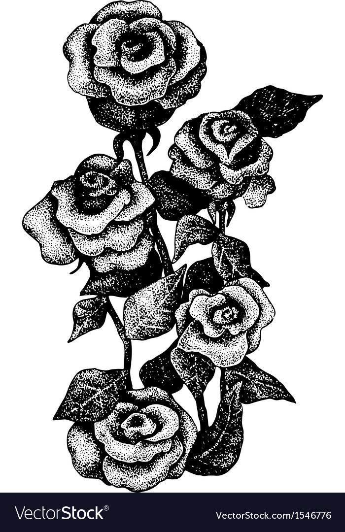 Black and white dotted hand drawn of five roses vector | Price: 1 Credit (USD $1)