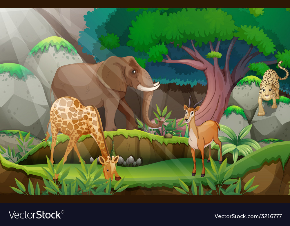 Animals and jungle vector | Price: 3 Credit (USD $3)