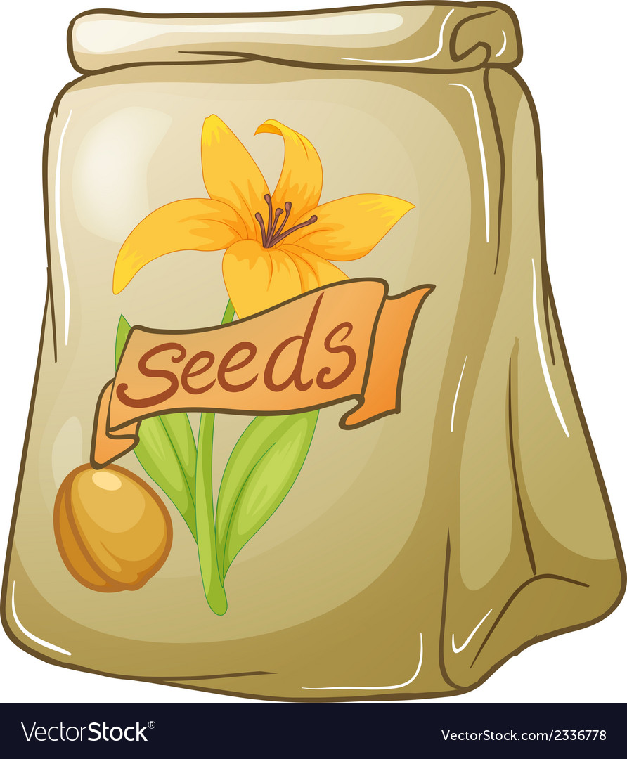 A pack of flower seeds vector | Price: 1 Credit (USD $1)