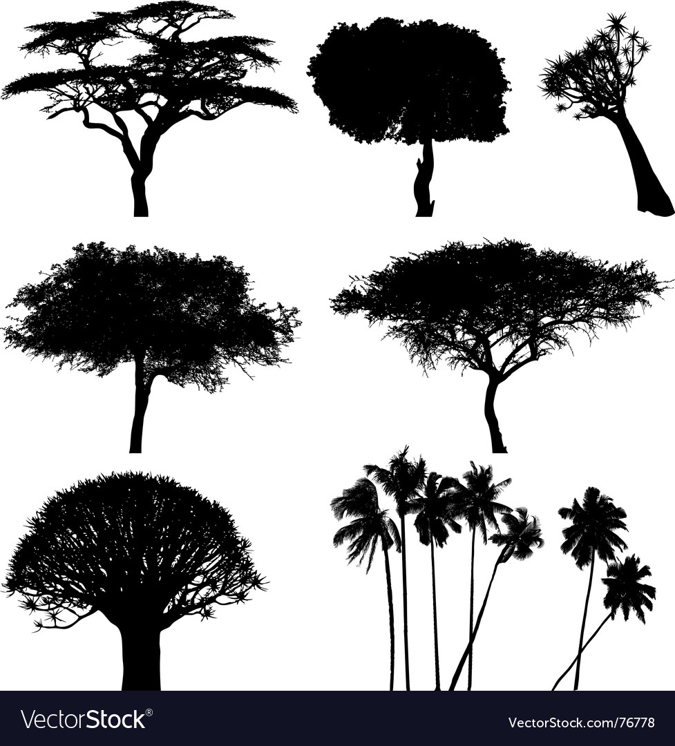 Exotic trees vector | Price: 1 Credit (USD $1)