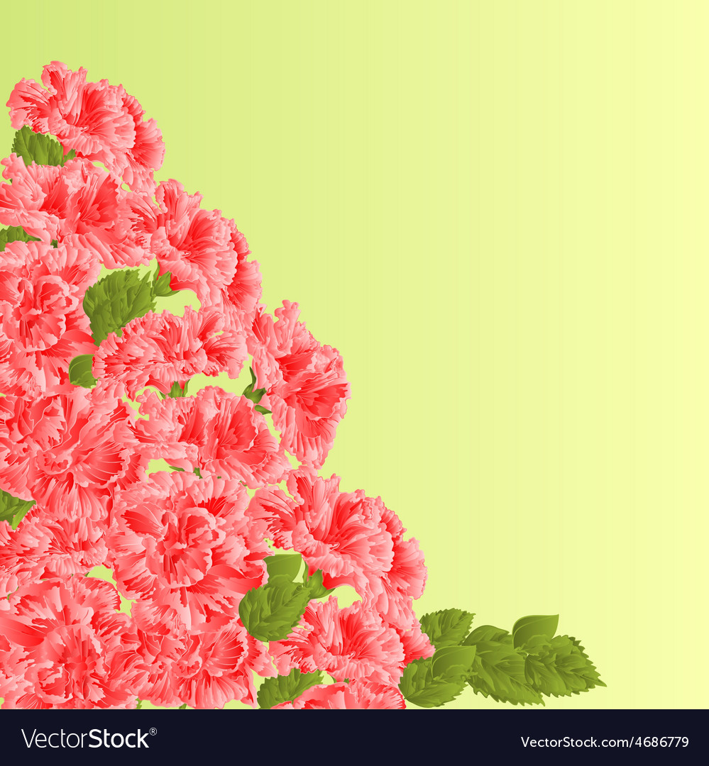 Flowering shrub pink hibiscus floral background vector | Price: 1 Credit (USD $1)