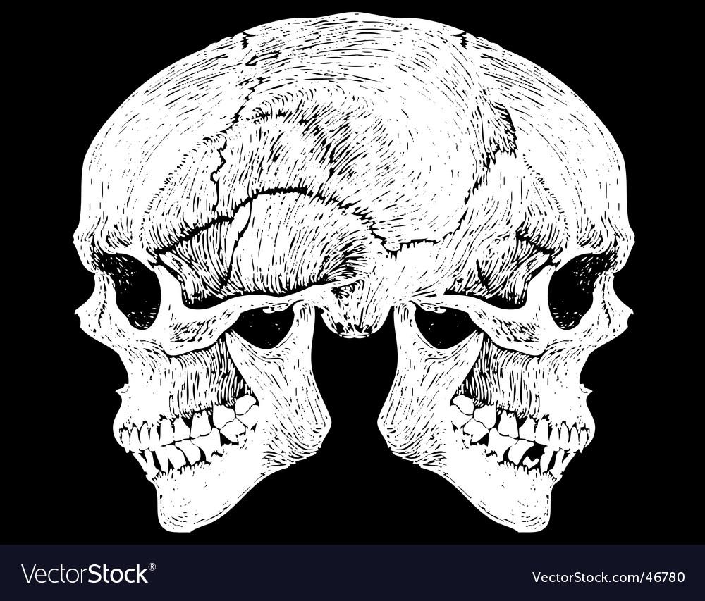 Two faced skull vector