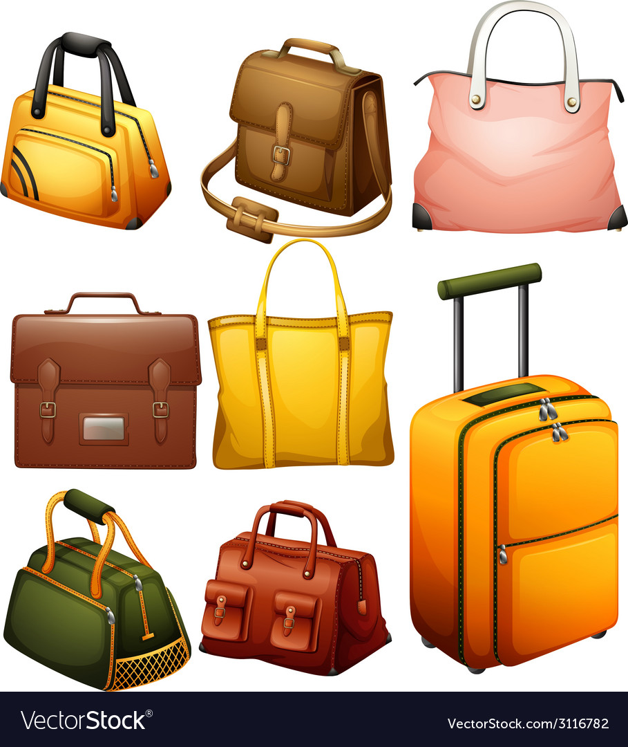 Different bags vector | Price: 1 Credit (USD $1)