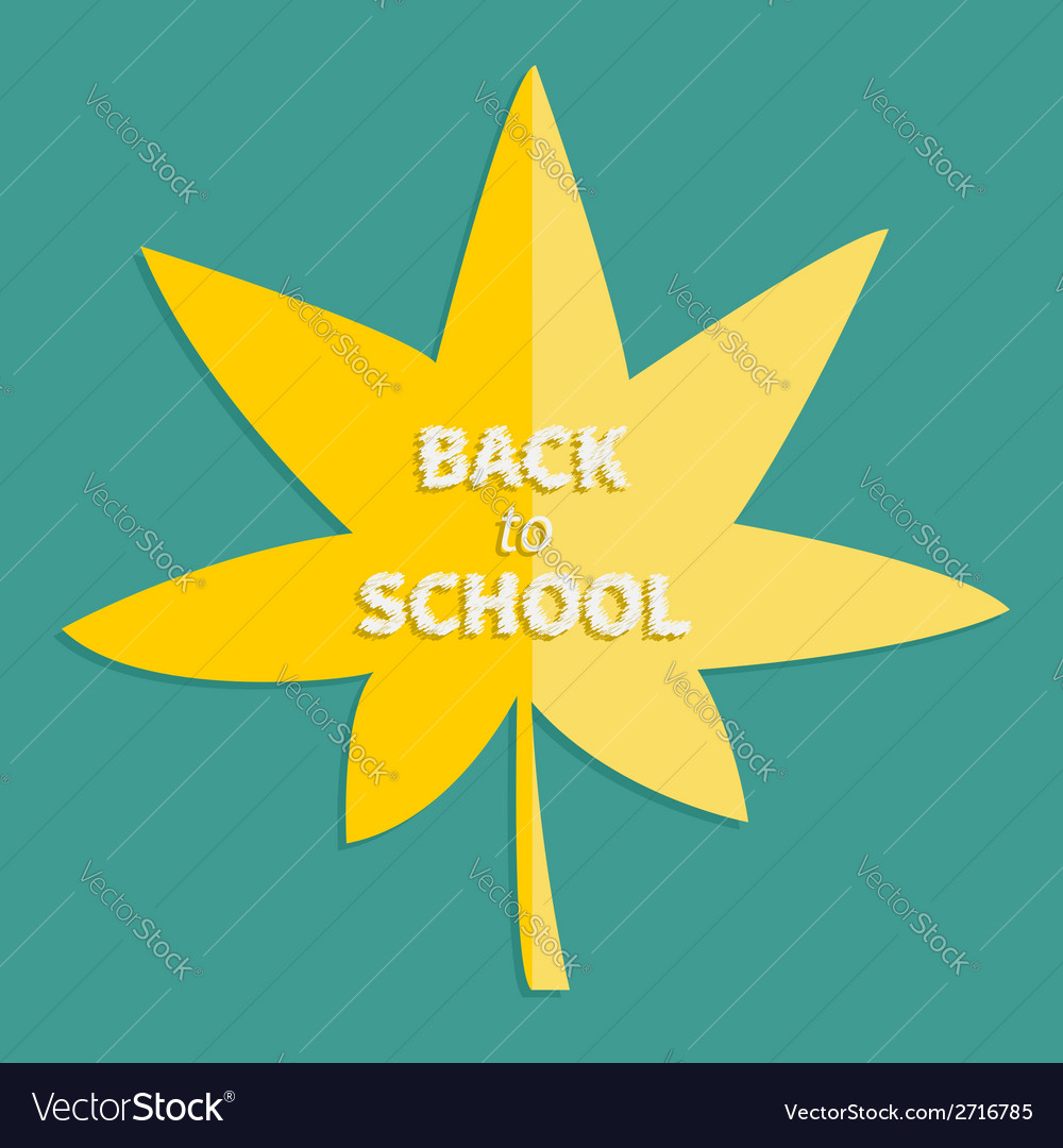 Autumn yellow maple leaf back to school vector | Price: 1 Credit (USD $1)