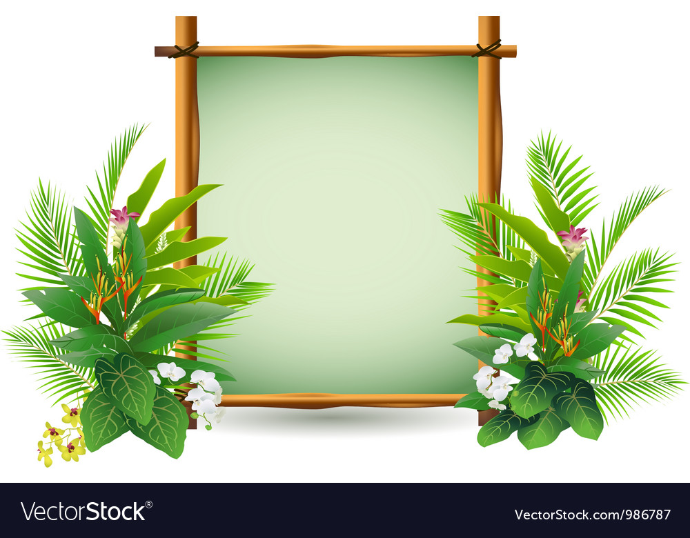 Beauty decoration with tropical plant vector | Price: 1 Credit (USD $1)