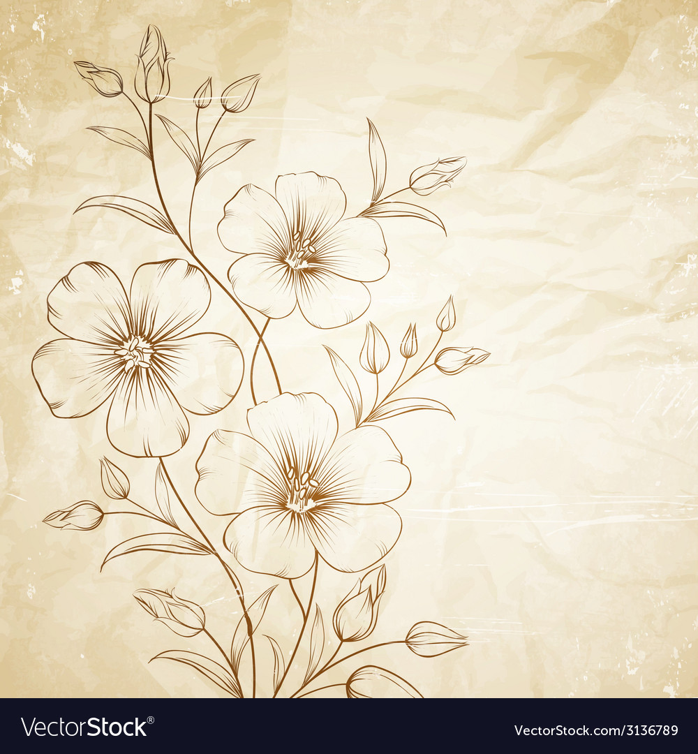Linum flower vector | Price: 1 Credit (USD $1)