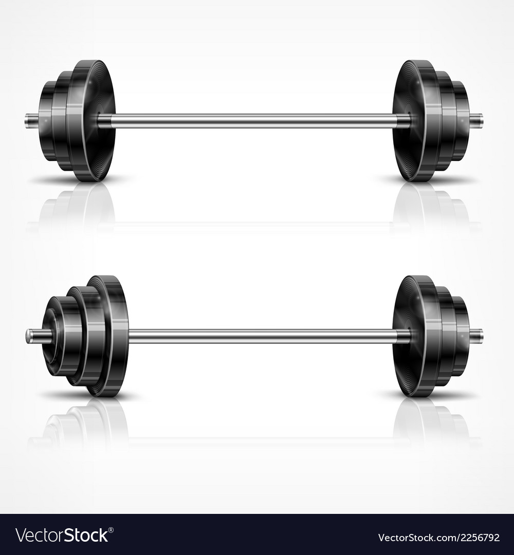 Metallic barbells vector | Price: 1 Credit (USD $1)