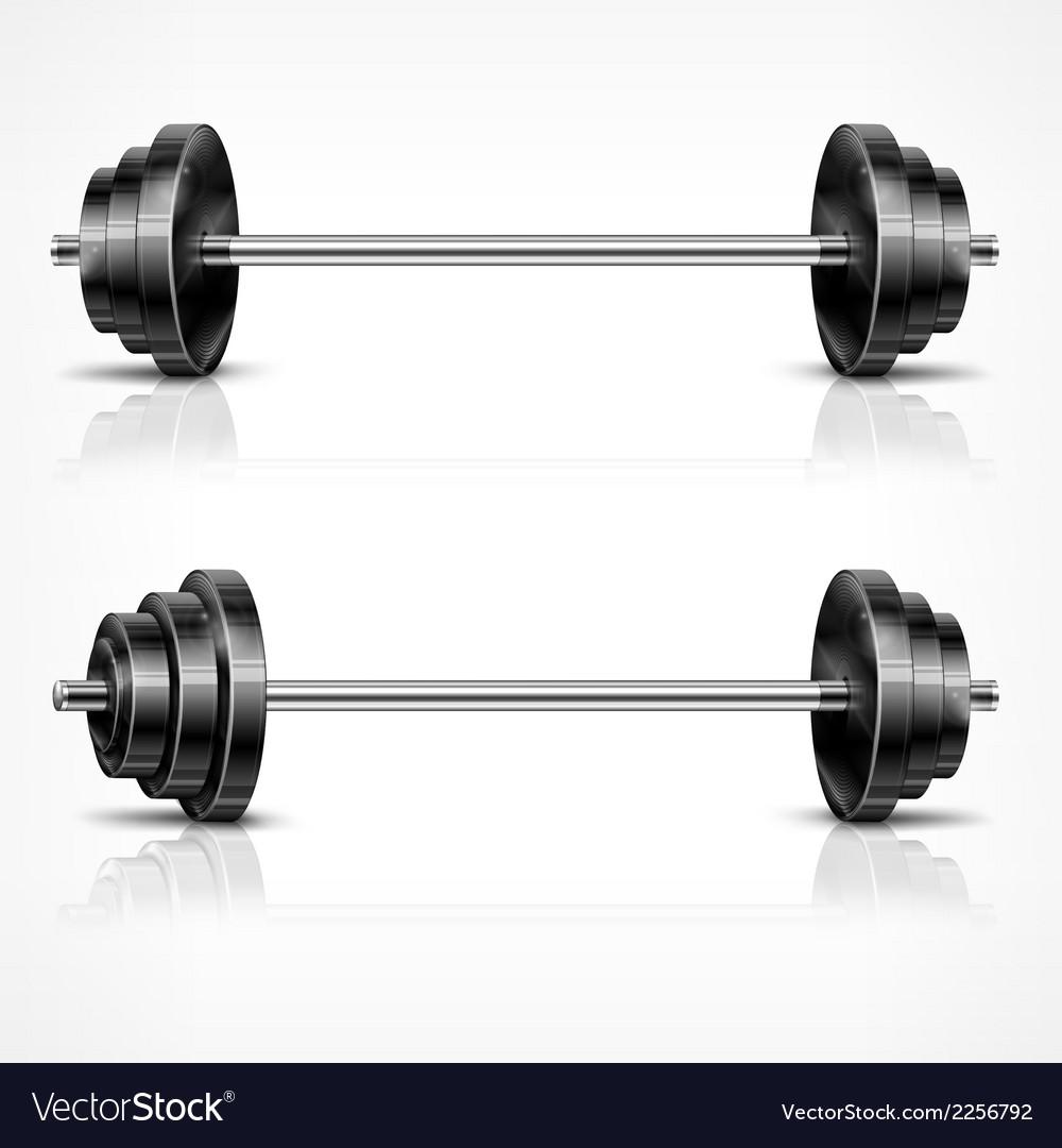 Metallic barbells vector