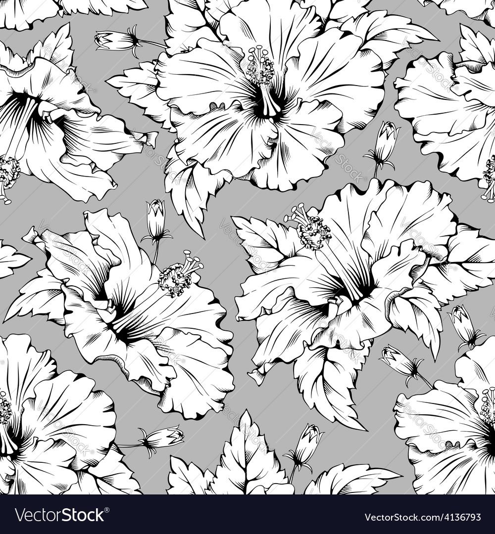 Hibiscus vector   Price: 1 Credit (USD $1)