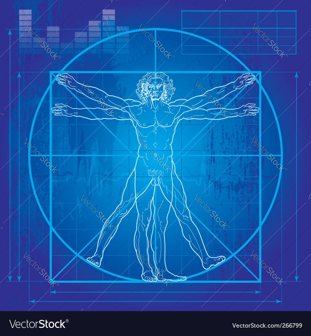 Vitruvian man blueprint version vector | Price: 1 Credit (USD $1)
