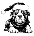 Bulldog with red hat bw vector