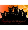 Cat black background orange vector