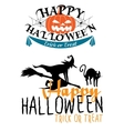 Halloween themes with witch and pumpkins vector