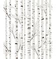 Birchwood background vector