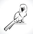 Parrot 2 vector