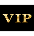 Vip golden card vector