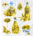 Watercolor drawn olive oil vector