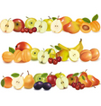 Set of fruits backgrounds vector