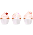 Cup cakes vector