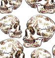 Seamless pattern of skull vector