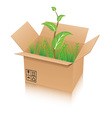 Open recycle shipping box with green plant vector