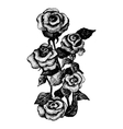 Black and white dotted hand drawn of five roses vector