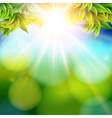 Bright shining sun with lens flare abstract spring vector