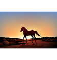 A horse in a sunset scenery at the desert vector