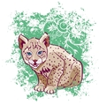Young lynx on a green background vector
