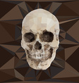 Geometric triangular of human skull vector