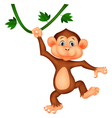 Cute monkey cartoon hanging vector