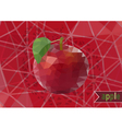 Polygonal red apple with background vector