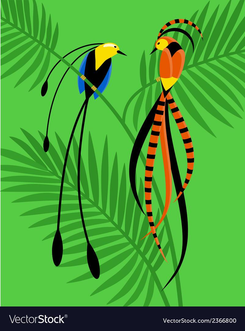 Birds of paradise vector | Price: 1 Credit (USD $1)
