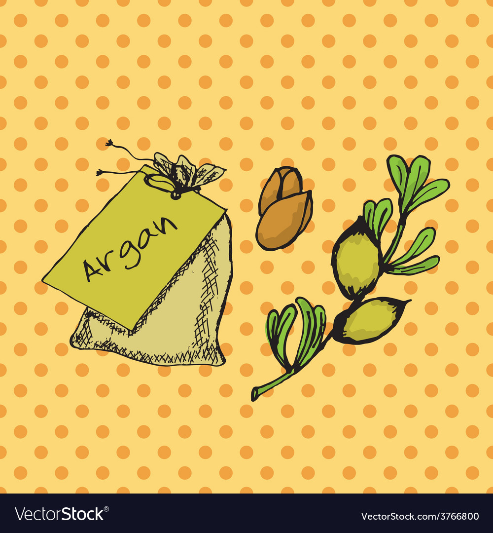 Health and nature collection argan tree vector | Price: 1 Credit (USD $1)