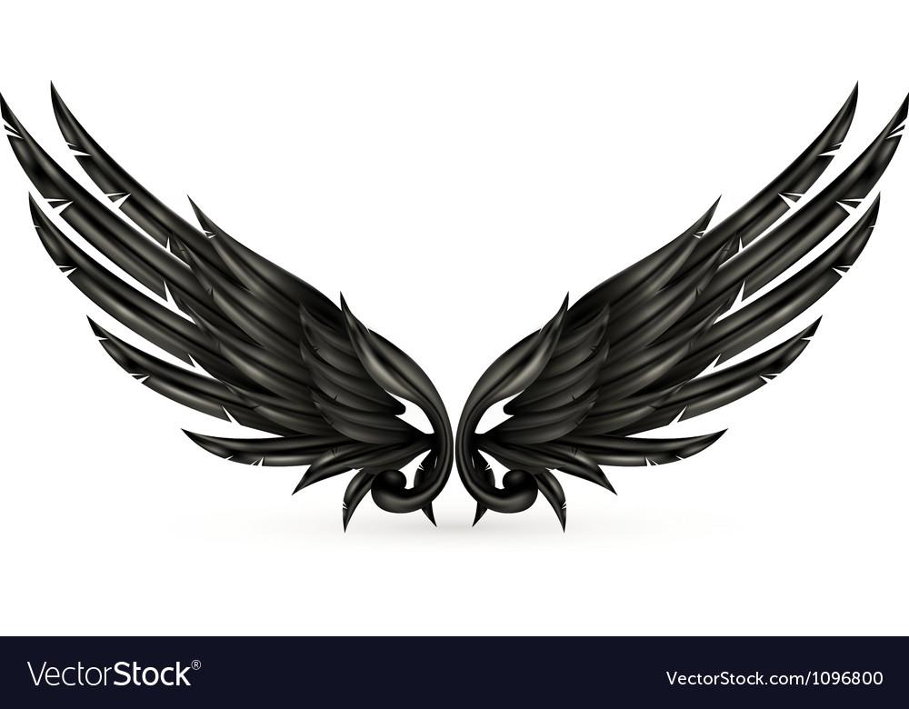 Wings black vector | Price: 1 Credit (USD $1)
