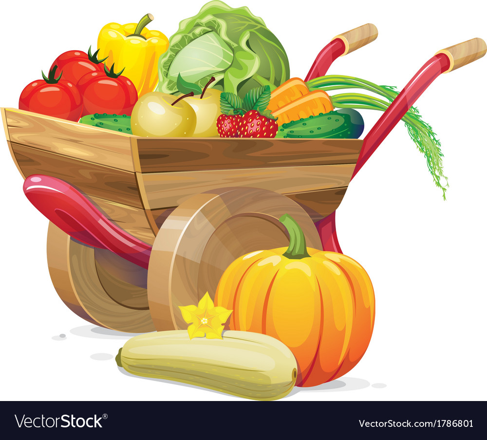Barrow vegetable vector | Price: 3 Credit (USD $3)