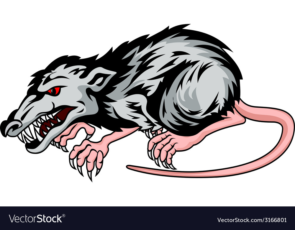 Danger rat vector | Price: 1 Credit (USD $1)