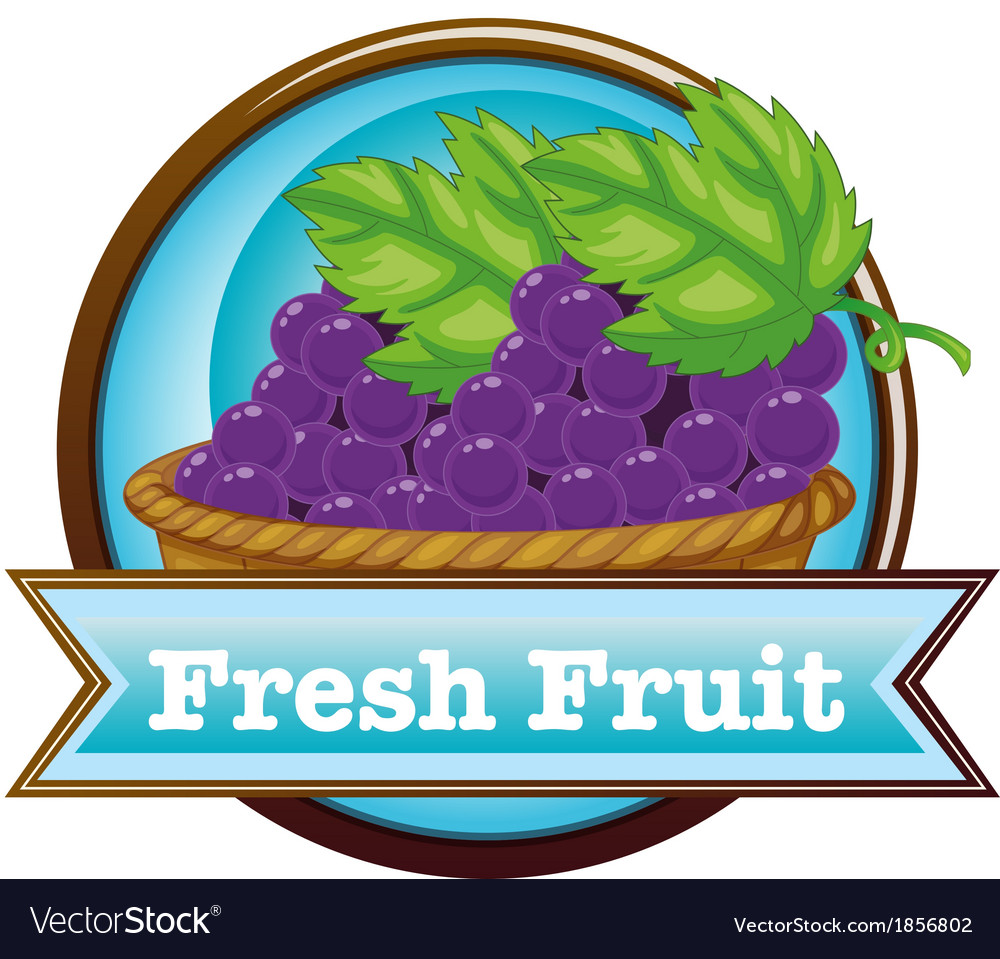 A fresh fruit label with a basket of grapes vector | Price: 1 Credit (USD $1)